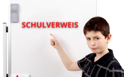 SCHULVERWEIS: 11-jähriger Waldorfschüler